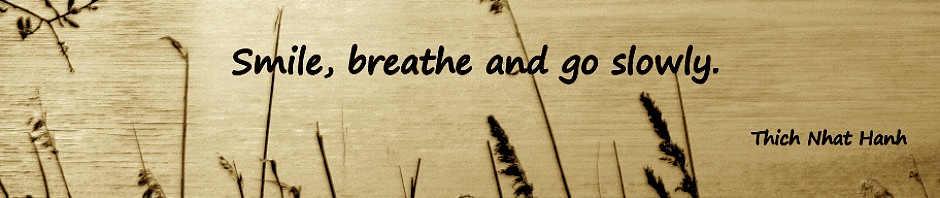 cropped-Thich-Nhat-Hanh2
